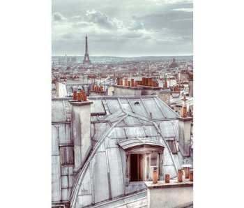 Paris Wallpaper Rooftop 158x232cm