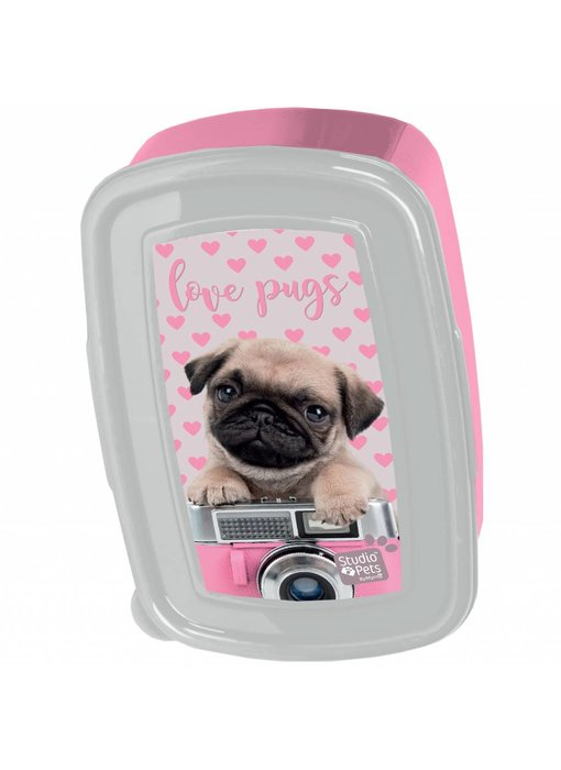 Studio Pets Lunchbox Love Pugs