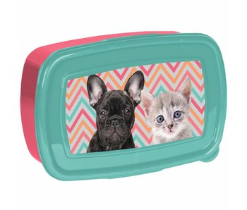 Animal Pictures Lunchbox Animal friends
