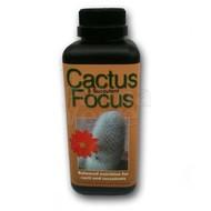 Produkten Cactus Focus