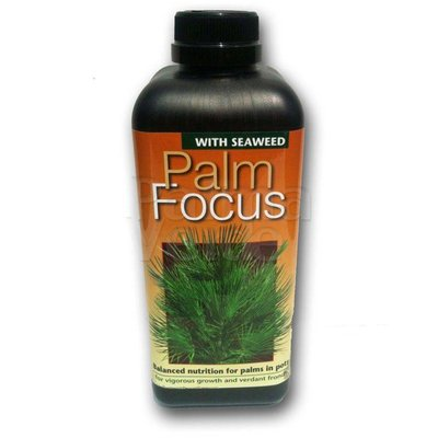 Produkten-products Palm Focus
