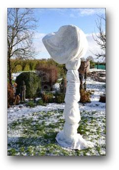 palmboom voorzien van winterbescherming