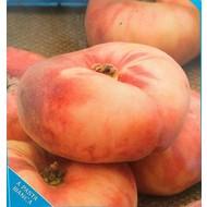 Eetbare Tuin Prunus persica Platicarpa - Bergperzik - Platte perzik