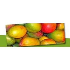 Exotisch en tropisch fruit