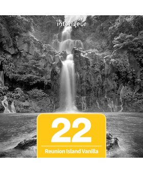 Geurolie - Mr&Mrs Fragrance - 22 Reunion Island Vanilla