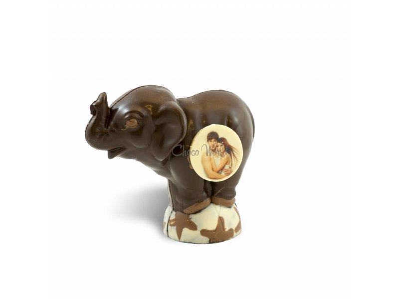 Chocolade Olifant met Foto