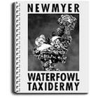 Waterfowl Taxidermy by Frank Newmyer