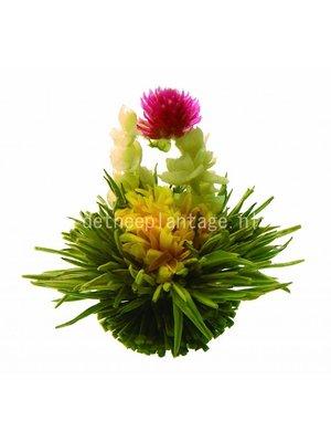 Brug der geliefden theebloemen