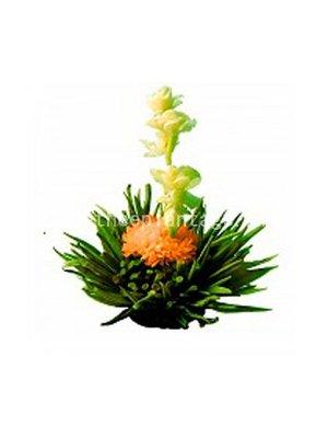 Oriental Blossom theebloem