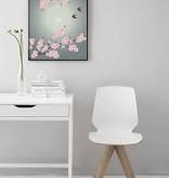 Poster Vissevasse - Sakura - 2 maten