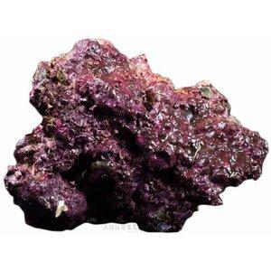 Real Reef Rock Medium