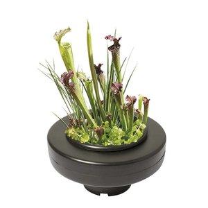 AquastoreXL Floating Plant Basket - 22cm rond