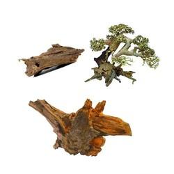 Kienhout, wortelhout & driftwood