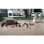 RHRQuality Toy Set Cat Fun RHRQuality