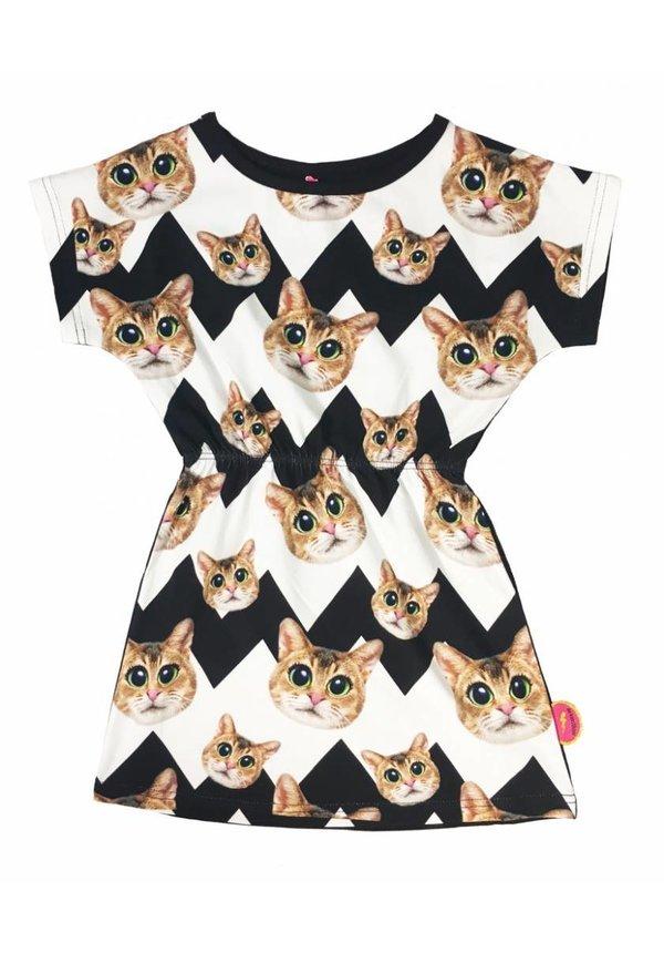 Jurkje Cats van De Kunstboer, zomer 2017