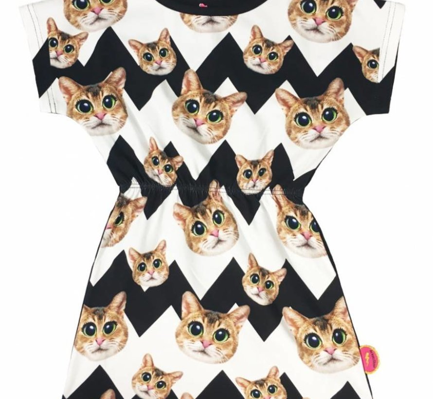 Jurkje Cats van De Kunstboer
