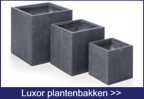 Luxor plantenbakken