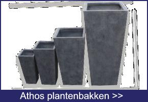 Athos Plantenbakken