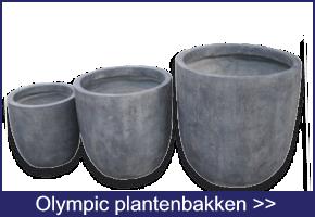Olympic plantenbakken