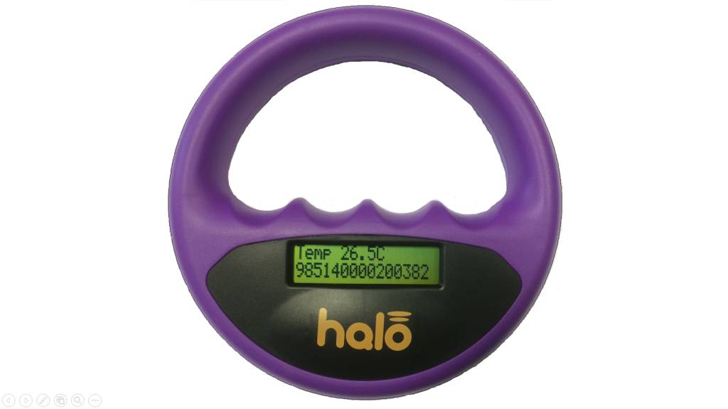 Halo Halo microchip scanner paars