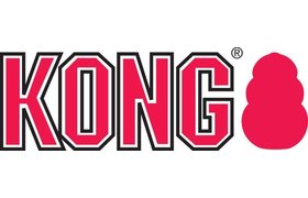 Kong -