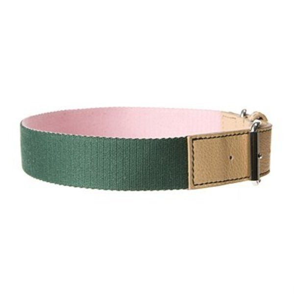 Converse Dog Collar Rose/Forest