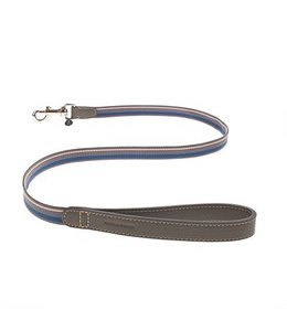 Mungo and Maud - Asymmetric Dog Lead Steel