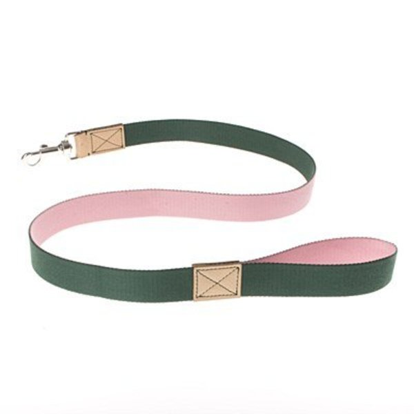 CONVERSE DOG LEAD Rose/Forest