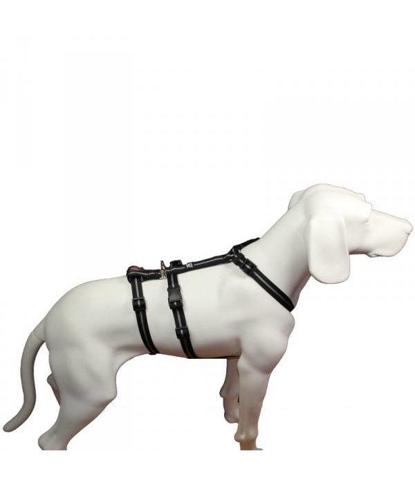 Hundegeschirr - NoExit Streifen schwarz