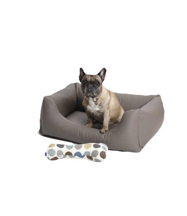 Dogs in the City - Box Bed Saddle taupe