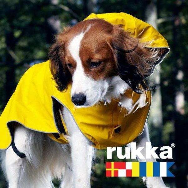 Hunderegenmantel Stream Gelb
