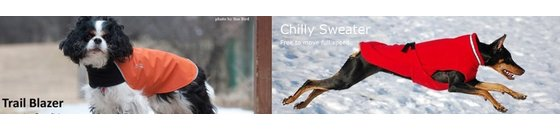 Hundemantel Chilly Dogs