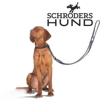 Schroeders Hund Hundehalsband