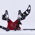 Spider Accessori Moto Fußrastenanlage Streetfighter