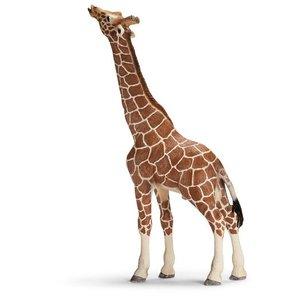 Schleich Girafe Mâle Mangeant 14389