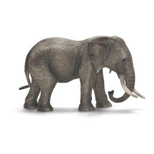Schleich afrikaanse olifant vrouwtje 14657