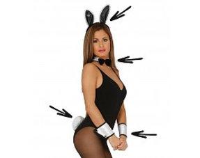 Playboy Bunny's Kostuums