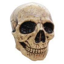 Halloween Masker Schedel Deluxe volledig