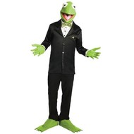 Kermit de Kikker Kostuum Set™