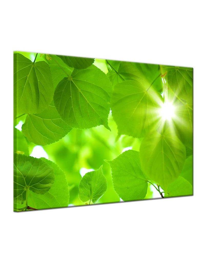 wanddecoratie groene bladeren op canvas doek my little