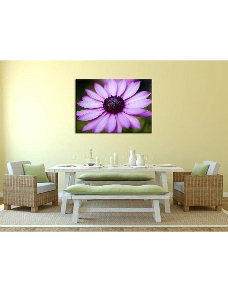 Schilderij paarse bloem op canvas my little gallery - Trendy kamer schilderij ...