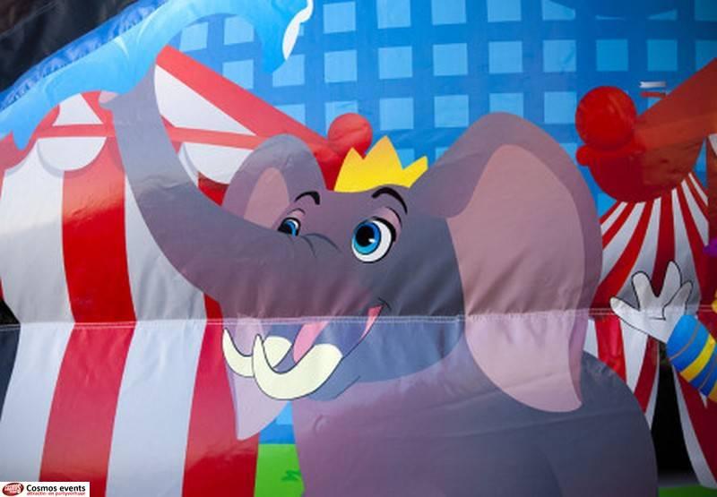 disco circus: