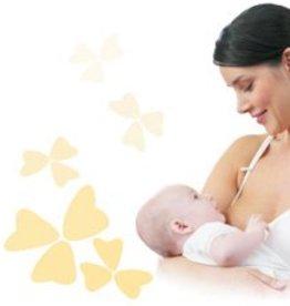 Medela Zwangerschaps en borstvoedings BH