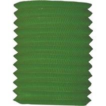 Groene Lampion 16cm