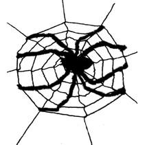Spinnenweb met Spin XL 2,4 meter
