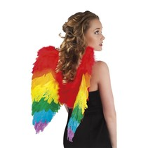 Engelen Vleugels Regenboog 50cm
