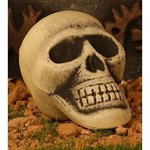 Halloween Schedel 13cm