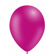 Fuchsia Ballonnen 25cm 10 stuks