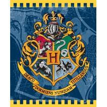 Harry Potter Uitdeelzakjes 8 stuks