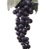 Grapes with 90 fruits and 2 leaves, length 28cm